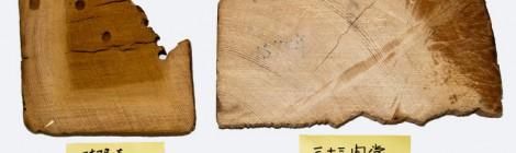 ヒノキ古材の心材と辺材における無機成分の検出
