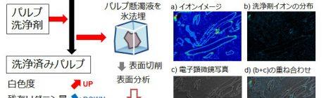 パルプ製造工程における洗浄剤の挙動解析
