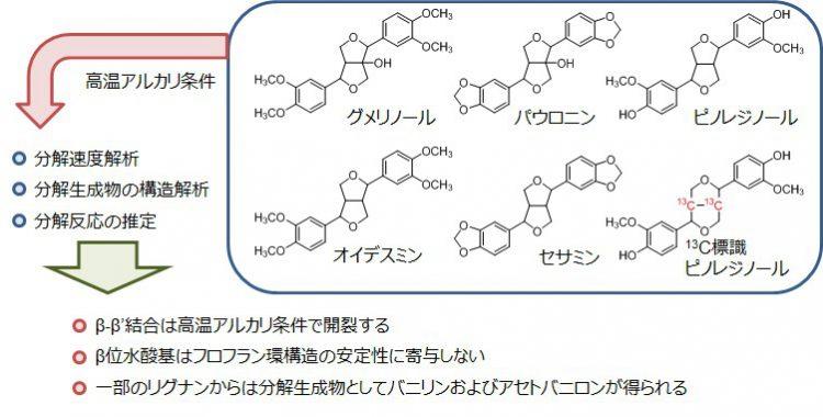 非フェノール性リグナンのアルカリ分解